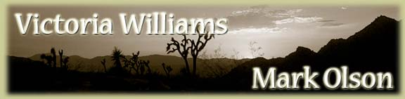 Victoria Williams / Mark Olson Banner
